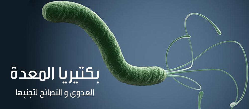 بكتيريا المعدة